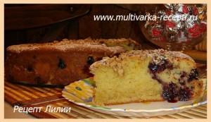 Пирог с черной смородиной (рецепт для духовки и мультиварки)