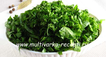 zelenyj-borshch-bez-myasa-7