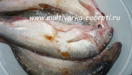 ryba-syrok-v-multivarke-1