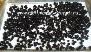 Изюм из черноплодной рябины в мультиварке