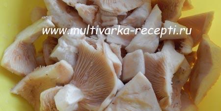 gruzdyanka-v-multivarke-4