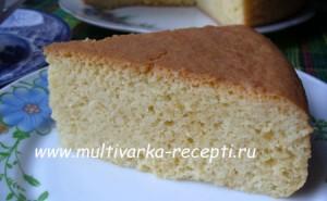serbsky-kokh-v-multivarke