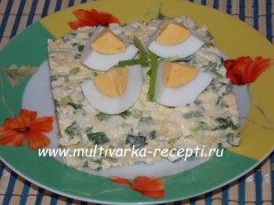 salat-iz-zelenogo-luka