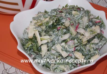 salat-iz-shchavelya