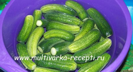 ogurcy-s-morkovyu-na-zimu-2