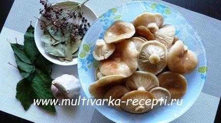 kak-zasolit-gruzdi-goryachim-sposobom-1