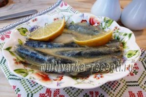 sous-k-solenoj-rybe