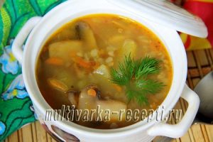 Постный суп с гречкой и грибами в мультиварке